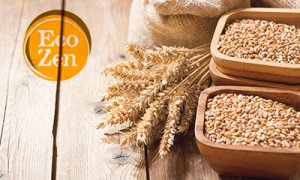 Ecozen Organic food